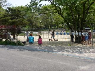 Kikuko 39 s website odaka greens odaka ryokuchi oodakaryokuchi for Tsurumi ryokuchi swimming pool